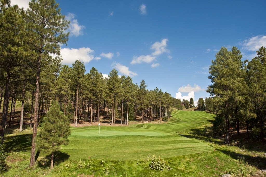 Flagstaff Ranch Golf View 3